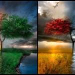 Le quattro stagioni della vita